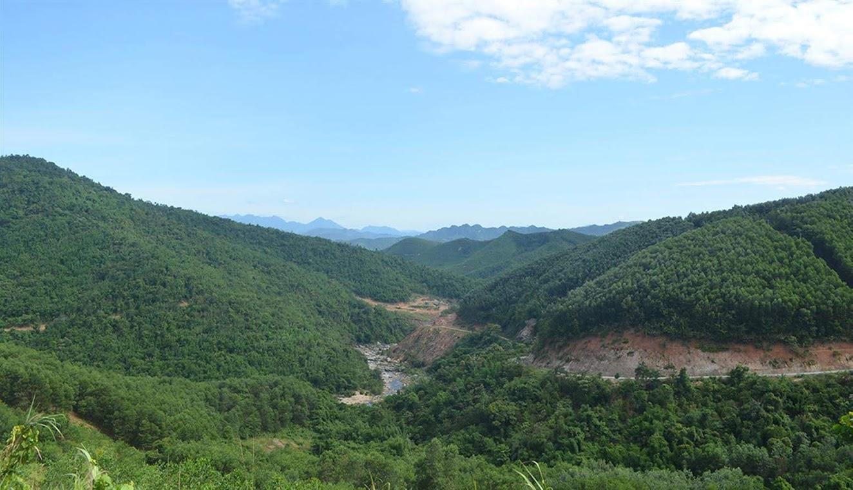 Rừng của lâm trường trên địa bàn huyện Quỳ Châu dù đã được thu hồi nhưng vẫn chưa thể bàn giao cho người dân