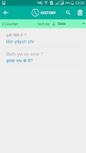 Welsh Punjabi Translator - náhled