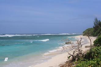 Photo: Beach at the north cape