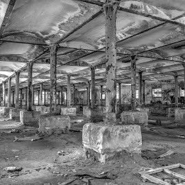 Pillars by Ella Kingston - Black & White Buildings & Architecture ( decaying building, abandoned building, workshop, brewery, black and white )