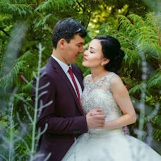 Wedding photographer Vladimir Akulenko (Akulenko). Photo of 24.08.2016