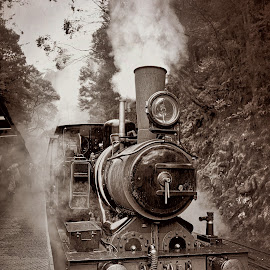 The Historic Lyell No.3 - B&W by Garry Dosa - Black & White Objects & Still Life ( black & white, b&w, historic, outdoors, old, vintage, steam, toned sepia, train )
