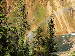 Photo: Rainbow in mist through the trees at lower falls