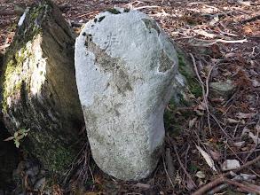 奉納された石碑