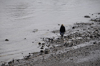 Photo: I think this guy was looking for clams...