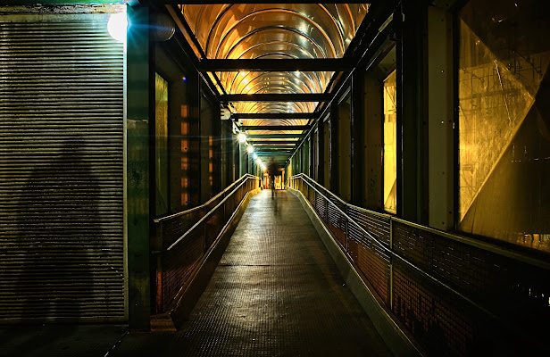 Ombre nella notte di Dariagufo