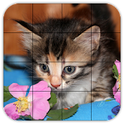 Tile Puzzles · Kittens