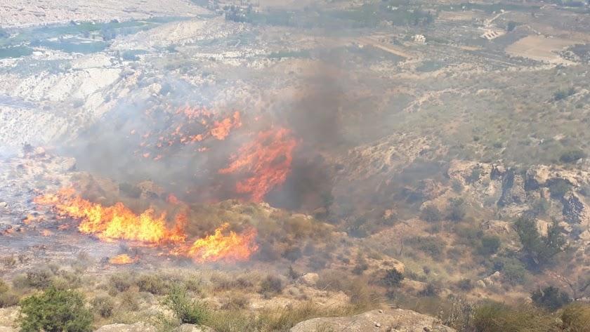 Imagen del Infoca del incendio de Terque.