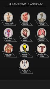 Female Anatomy 3d 1.5