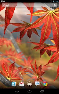 Autumn Tree Free Wallpaper Apk  Download For Android 2