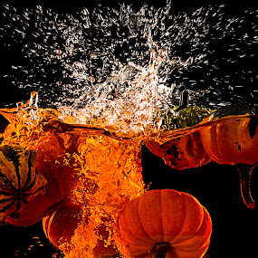 punkin chunkin by Amelia Falk - Public Holidays Halloween ( studio, water, orange, pumpkin, green, floatation, holiday, holloween, color, fall, chunking, all hallos eve, squash, punkin, pumpkins, halloween )