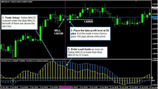 Macd 4 hour trading strategy