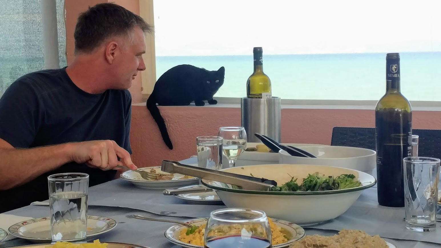 The ever present Greek cats, joining us for our dinner.
