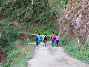 Photo: Our real birding trip took us to higher altitude where we met these workers and their dogs on their way to pick coffee.
