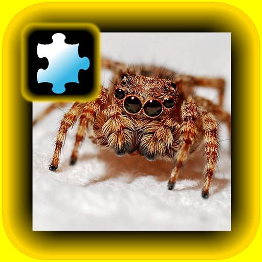 Jigsaw Puzzle VIP: Spider