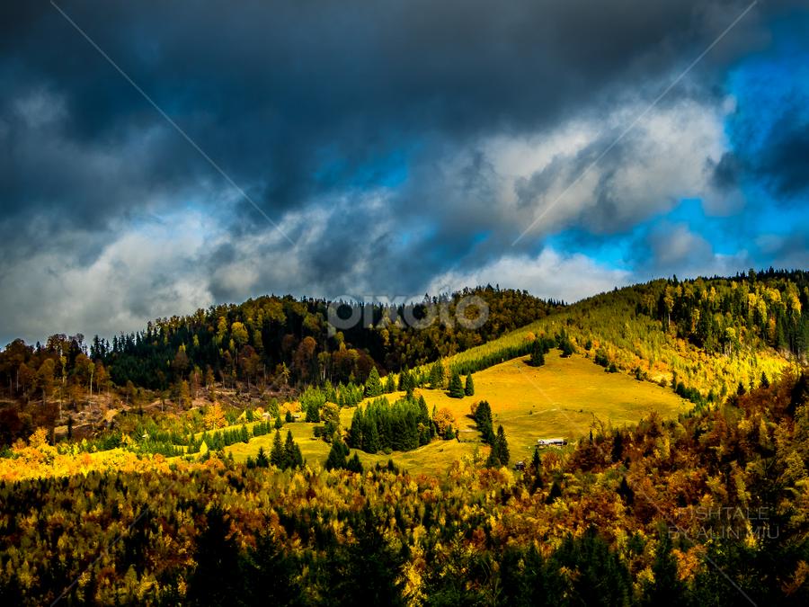 Autumn high contrast mountains by Alin Miu - Landscapes Mountains & Hills ( hills, mountain, autumn, romania, bucovina, high contrast )