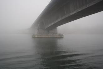 Photo: Rheinbrücke im Nebel