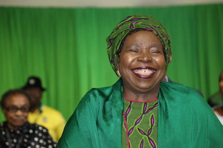 Nkosazana Dlamini-Zuma has admitted meeting the Guptas on several occasions, including Diwali celebrations at their Saxonwold home.