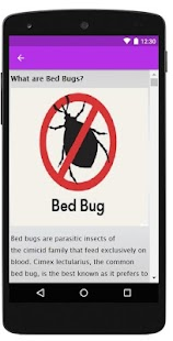 How to Get Rid of Bed Bugs - náhled