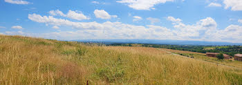 terrain à Balbigny (42)
