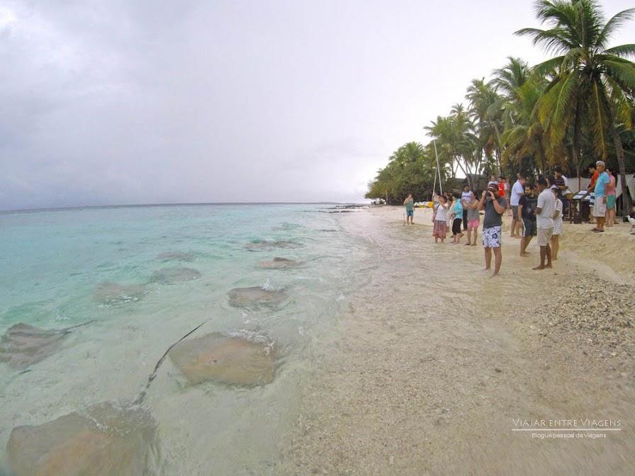 Dormir num BUNGALOW SOBRE A ÁGUA (water villa) no paraíso | Maldivas
