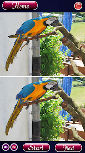 Find Differences Bird Games - náhled