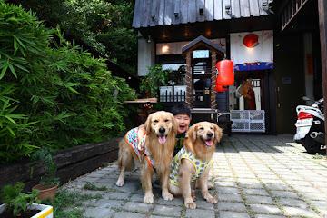 大漁炒泡麵寵物友善餐廳竹北店