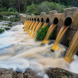 Flood Waters by Clive Wright - Landscapes Waterscapes ( orange, forest, rocks, bridge, water )