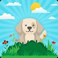 Puppy Training - Puppy Perfect