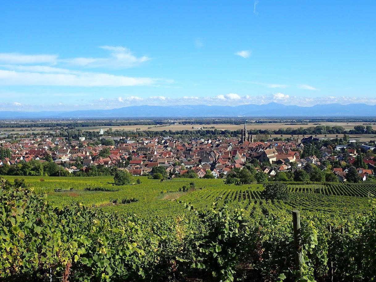 En prenant un peu de hauteur, la plaine d'Alsace et la Forêt NOire