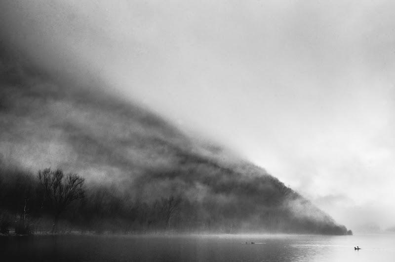 Nella nebbia di tudorsvet