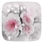 White Flower Theme APK icon