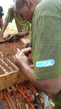 Photo: Nov -4th. Planting a seedbed in the rain. These youth are using Eco-Pesa to buy the seeds.