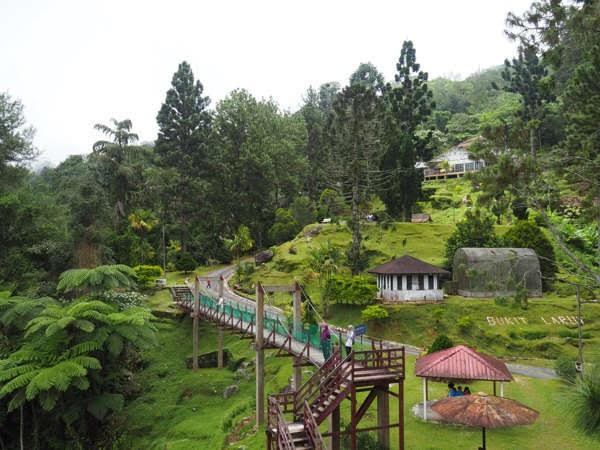 Bukit Larut in Taiping