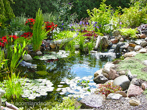 Photo: Acorn Ponds & Waterfalls, Certified Aquascape Contractor since 2004. Check out our website www.acornponds.com and give us a call 585.442.6373.  Spring is coming.... #EcosystemPonds! Contact Acorn Ponds & Waterfalls for any ideas.  To learn more about #PondMaintenances please click here: www.acornponds.com/pond-maintenance.html  For more info about Pond Installations, please click here: www.acornponds.com/ponds.html  To learn more about Acorn Ponds & Waterfalls Services, please click here: www.acornponds.com/services.html  For more info and Landscape Ideas please click here: www.acornponds.com/landscape-design.html  Click here for a free Magazine all about Ponds and Water Features: http://flip.it/gsrNN  Find us on Houzz here: www.houzz.com/pro/acornlandscapedesign/acorn-landscaping-and-ponds-llc  Sign up for your personal design consultation here: www.acornponds.com/contact-us.html  To see more of our #pondinstallations on Facebook click here: www.facebook.com/media/set/?set=a.464911070212687.94604.103109283059536&type=3  Contact Acorn Ponds & Waterfalls today at 585-442-6373. We can help you with any pond problems you might have. www.acornponds.com