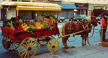 Photo: Union Square Arabbers selling produce from horse-drawn carts