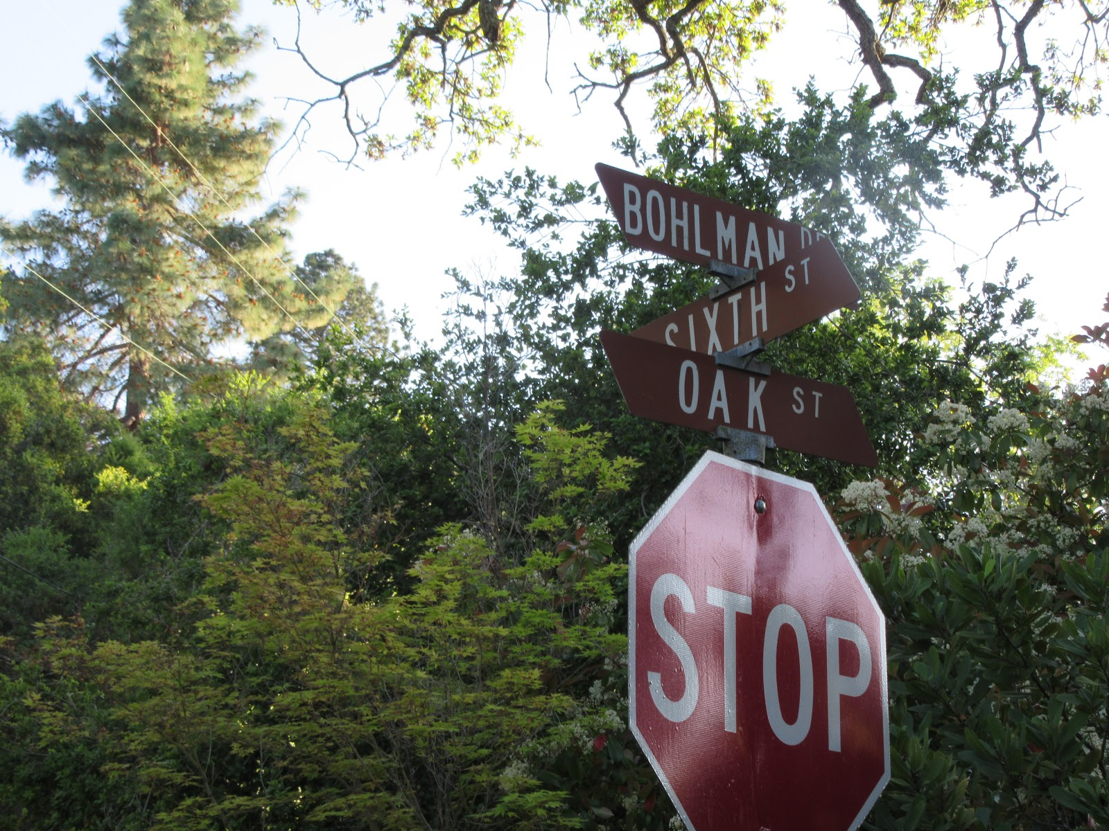 Cycling Bohlman Road - start, street sign