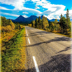 Road to nowhere by Elisabeth Sjåvik Monsen - Instagram & Mobile Android ( nature, autumn, fall, way, norway,  )