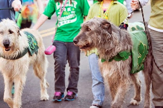 Photo: 03-17-2014 St Patrick's Day Parade Hot Springs, AR