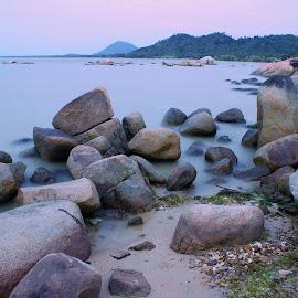 Stones at Beach by Mulawardi Sutanto - Nature Up Close Rock & Stone ( kalimantan, beach, stones, batu burung, travel, singkawang )