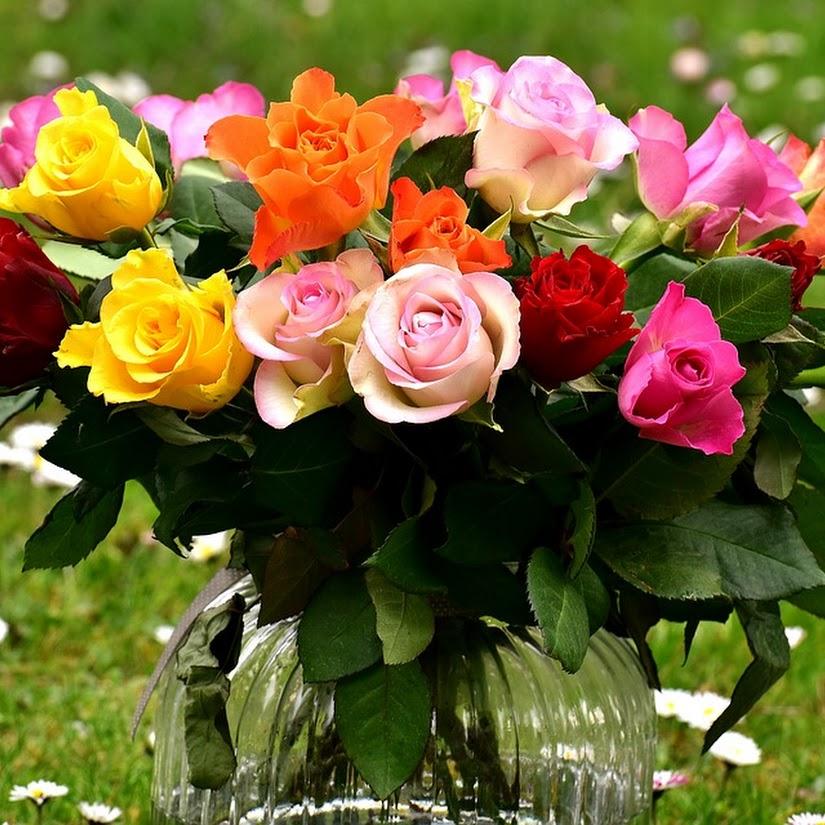 5 trucos infalibles para conservar un ramo de rosas