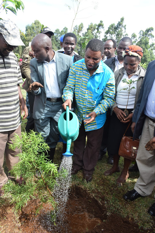 Top conservationist calls on women to lead in tree planting