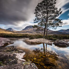The tree. by Haim Rosenfeld - Landscapes Mountains & Hills ( old, mountain, stone, rock, yellow, travel, long, sky, tree, shadow, light, foreground, orange, celtic, colors, texture, image, horizon, lake, brawn, highlands, exposure, scotland, reflection, europe, colorful, land, reflections, north, landscape, adventure, kingdom, dreamlike, lonely, water, clouds, uk, united, green, scottish, scenic, in, photo, blue, sunset, outdoor, brown, scenery, stunning, britain )