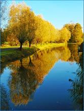 Photo: Nederland - Natuur Foto: Marijke van Eertwegh