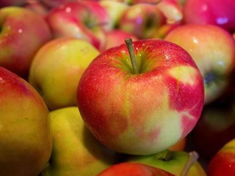9 loại thực phẩm cực tốt cho người thận yếu - thận hư - Ảnh 5