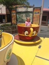 Photo: Abby on teacup