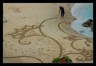Photo: 'Emergence' (close up), Island of Jersey.
