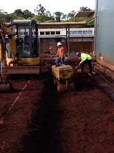 Photo: There were a lot of tree roots next to the cafeteria, and workers had to remove them before proceeding.
