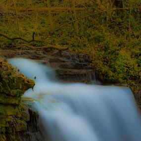Dreams by Brian  Shoemaker  - Landscapes Waterscapes ( rock, leafs, rocks, waterfall, leafy, leaf, water )