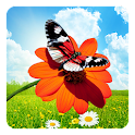 Spring Butterflies LWP icon